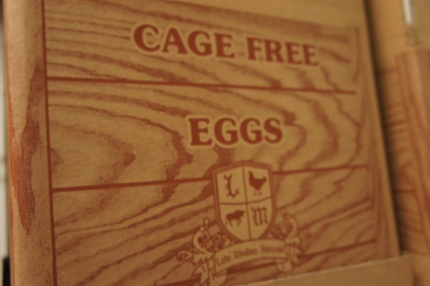Cage Free eggs at Lake Meadow Naturals