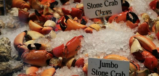 Chef James Slattery of Big Fin Seafood Kitchen – Orlando Chef's Spotlight Series