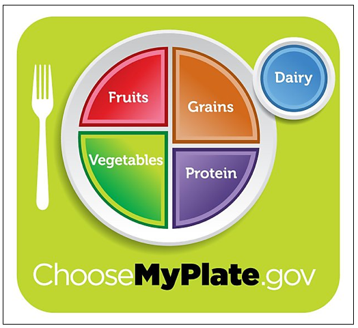 new-food-pyramid-plate