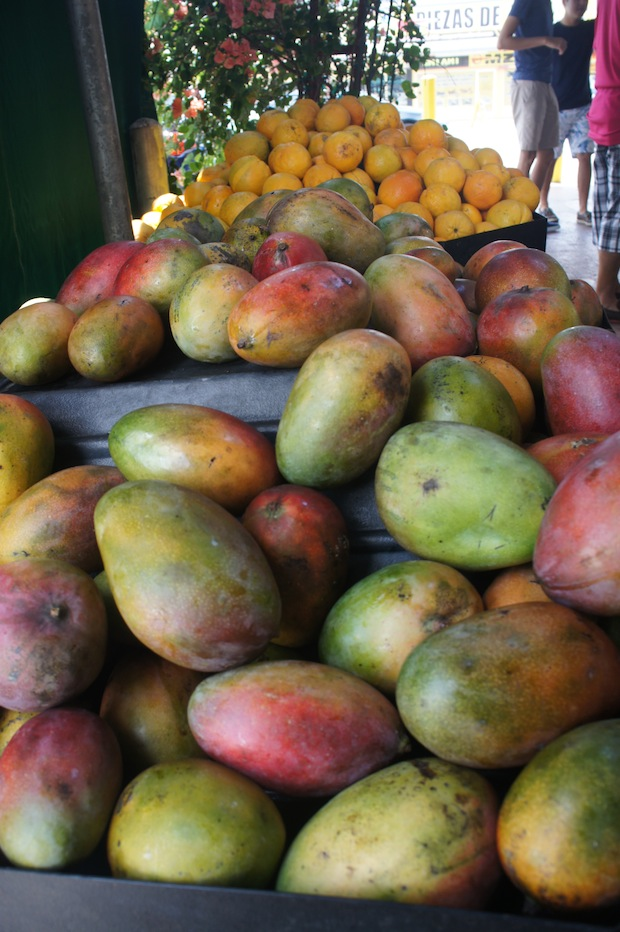 Fresh ripe mangos and a multitude of other south american fruits available