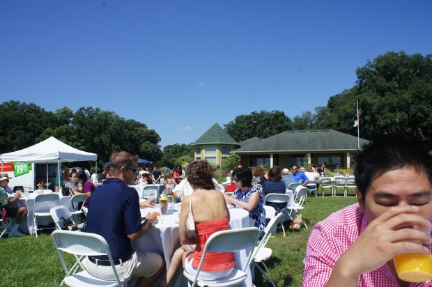 Dining brunch in the pasture