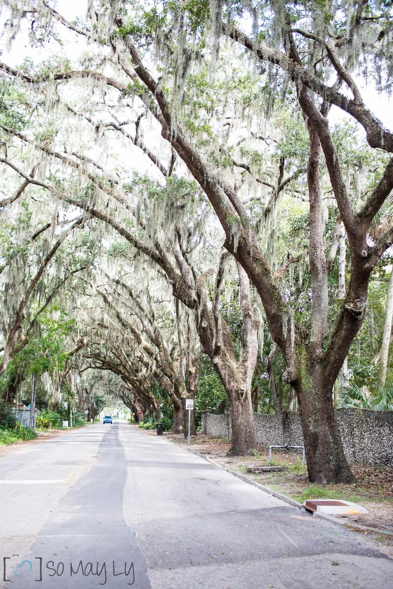 St. Augustine-0764
