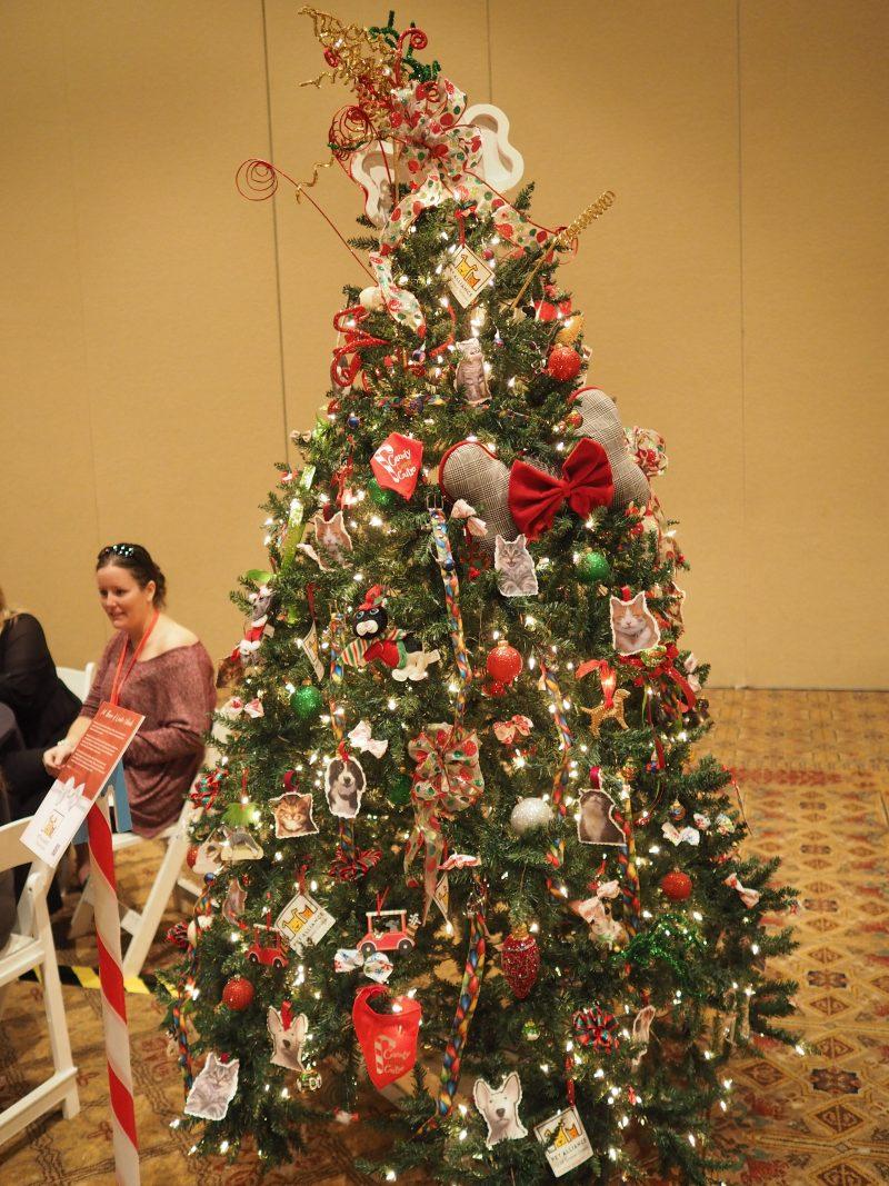 Rosen Shingle Creek S 2017 Charity Partners Christmas Tree