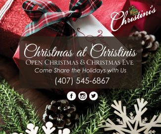 Christinis Holiday Banner